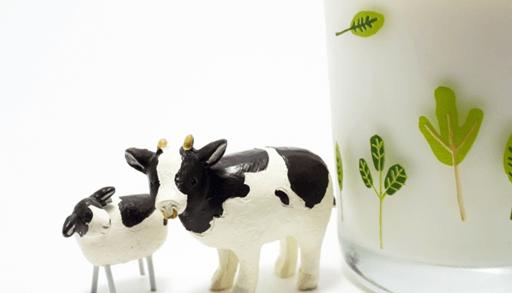 猫に有害な食べ物 牛乳