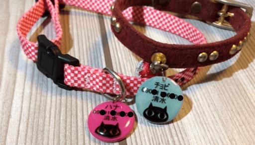 猫を飼うための必需品 首輪 迷子札