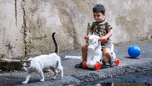 猫の年齢を人間に換算すると・・