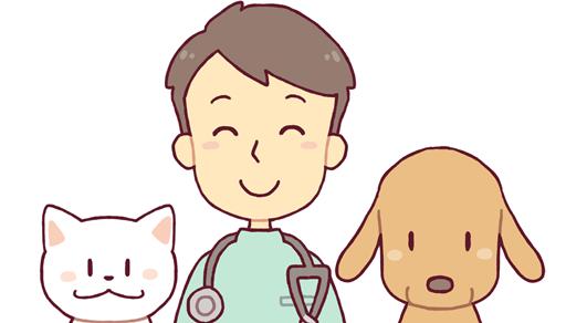 猫と出会う7つの方法ー動物病院で紹介してもらう