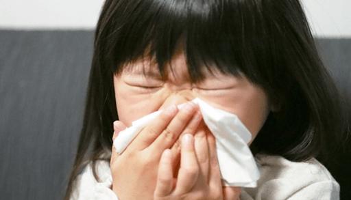 猫アレルギーの症状は?