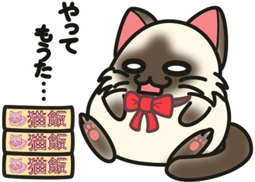 愛猫チョビの肥満解消ダイエット(番外編)ーまとめ