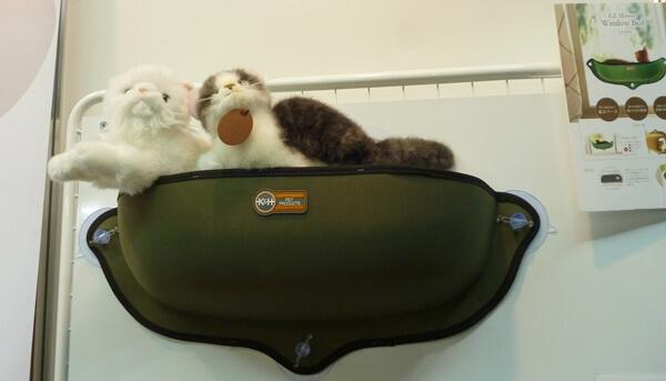 吸盤を使って窓に貼り付けられる猫ベッド