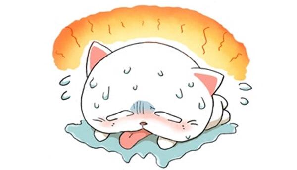 猫の熱中症の特徴