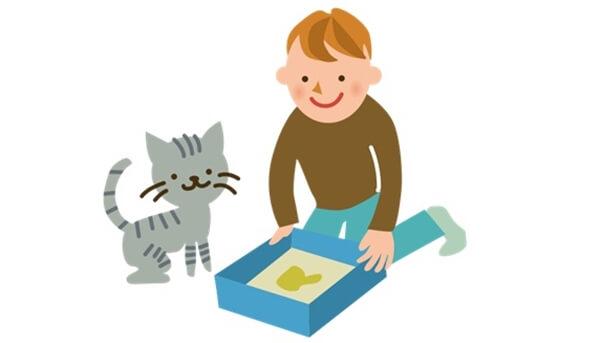 愛猫の便秘を防ぐためには飼い主が猫の便秘の基礎知識を知っておくことが大切
