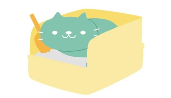 未然に猫の便秘を防ぐために大切なポイント