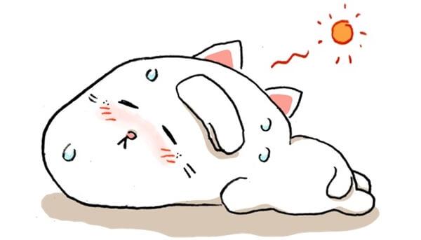 愛猫の熱中症を防ぐためにはシチュエーション別の対策が効果的