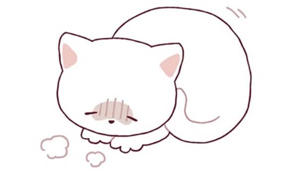 猫がケガや病気によって痛みがあるときのサインや行動の特長