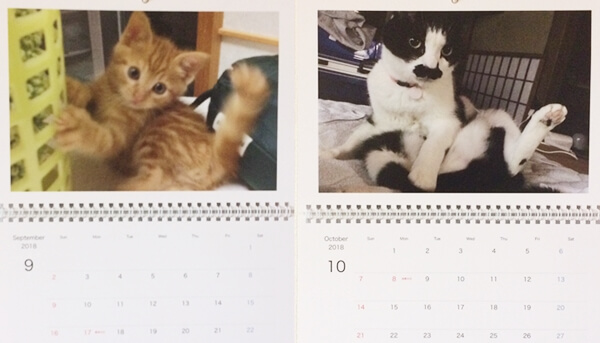 おとぼけ顔のハナとチョビの画像を使った2018年9月10月のカレンダー