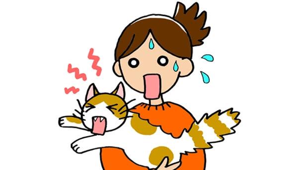愛猫がパニックに陥った際に正しい対処法を行わないと大変なことに