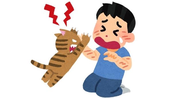 パニックに陥り飼い主を襲う猫